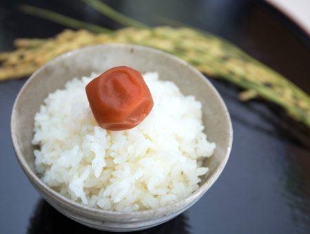 海外で喜ばれる日本食とは?