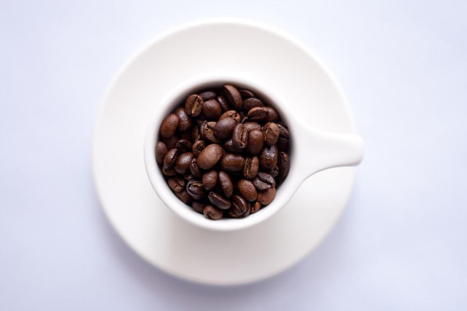 メキシコ・チアパスのコーヒーとは?カフェが創業50年で楽しい?