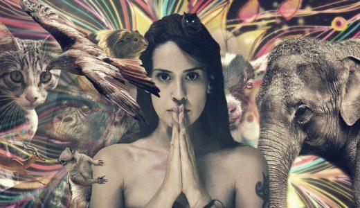 シャーマンとは何ですか?メキシコで儀式を体験した画像や感想は?